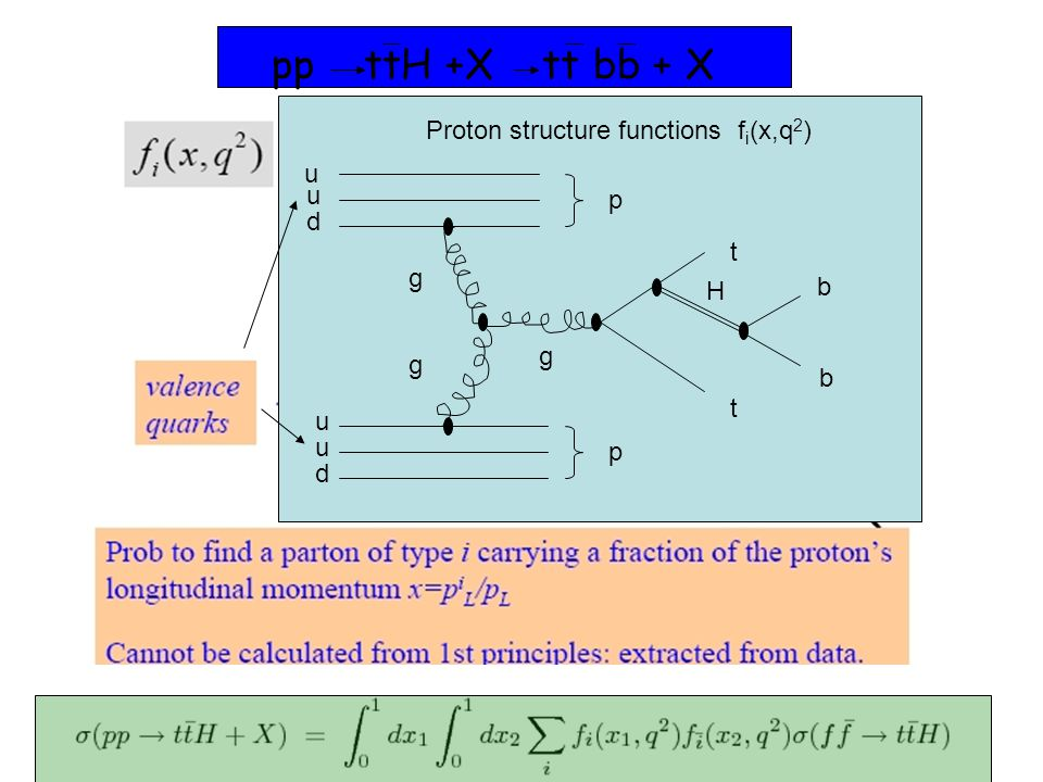 t H g g g t u u d u u d b b p p pp ttH +X tt bb + X Proton structure functions f i (x,q 2 )
