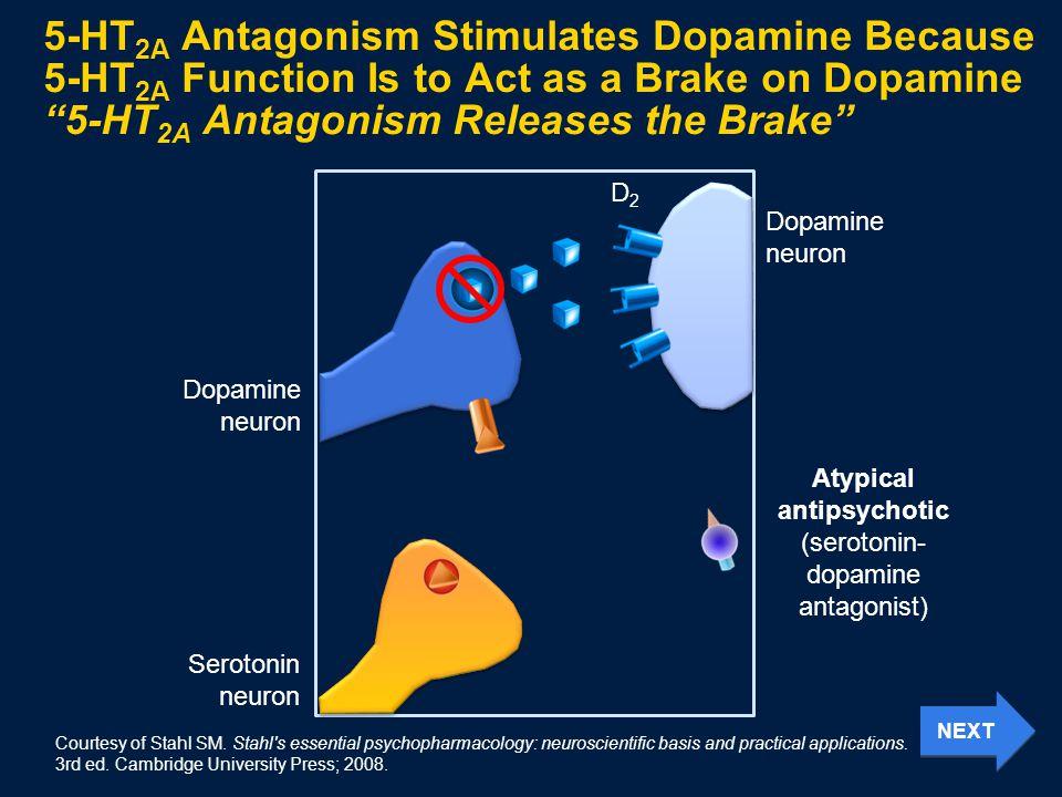 Tuning Dopamine Output 5-HT 2A antagonism D 2 antagonism DA released DA blocked Courtesy of Stahl SM.