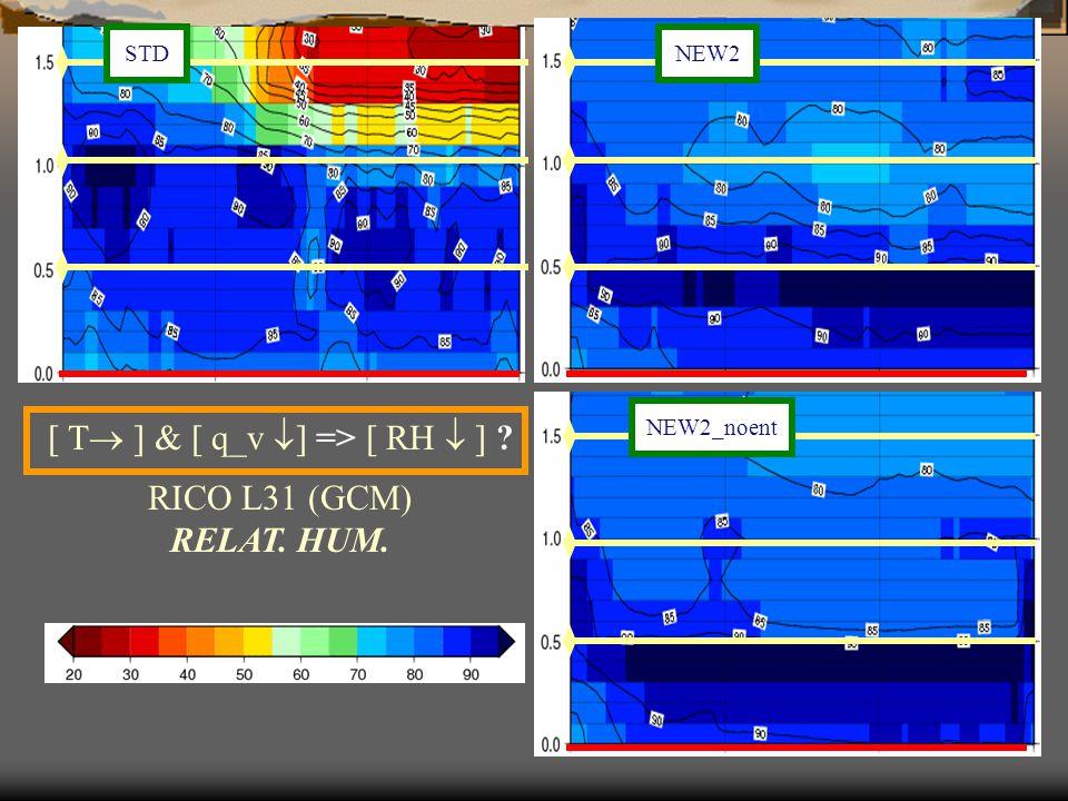 NEW2 NEW2_noent [ T  ] & [ q_v  ] => [ RH  ] RICO L31 (GCM) RELAT. HUM. STD