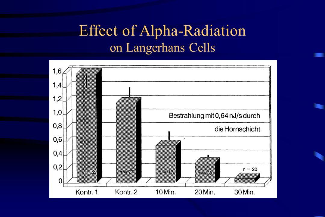 Effect of Alpha-Radiation on Langerhans Cells