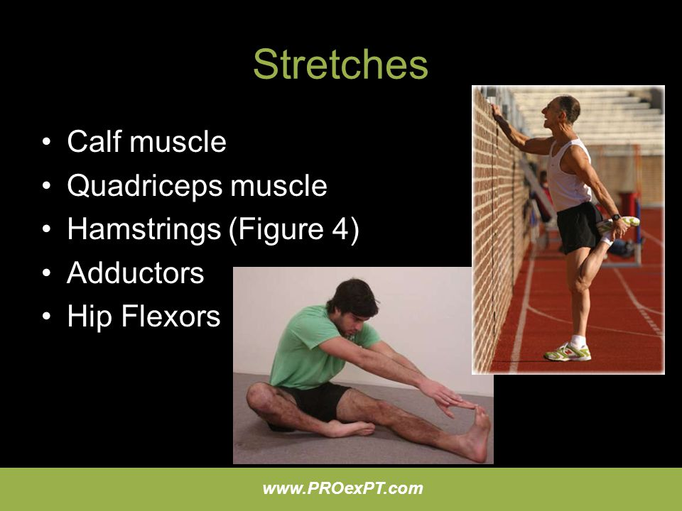 www.PROexPT.com Stretches Calf muscle Quadriceps muscle Hamstrings (Figure 4) Adductors Hip Flexors