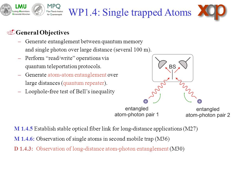 WP1.4: Single trapped Atoms M 1.4.5 Establish stable optical fiber link for long-distance applications (M27) M 1.4.6: Observation of single atoms in s