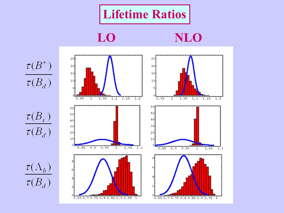 Lifetime Ratios LONLO