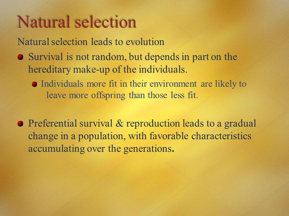 Natural selection Natural selection leads to evolution Survival is not random, but depends in part on the hereditary make-up of the individuals. Indiv