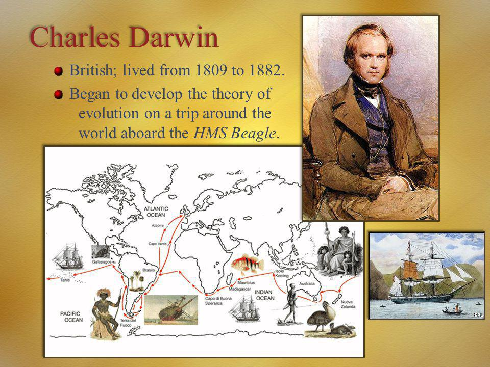 Charles Darwin British; lived from 1809 to 1882. Began to develop the theory of evolution on a trip around the world aboard the HMS Beagle.