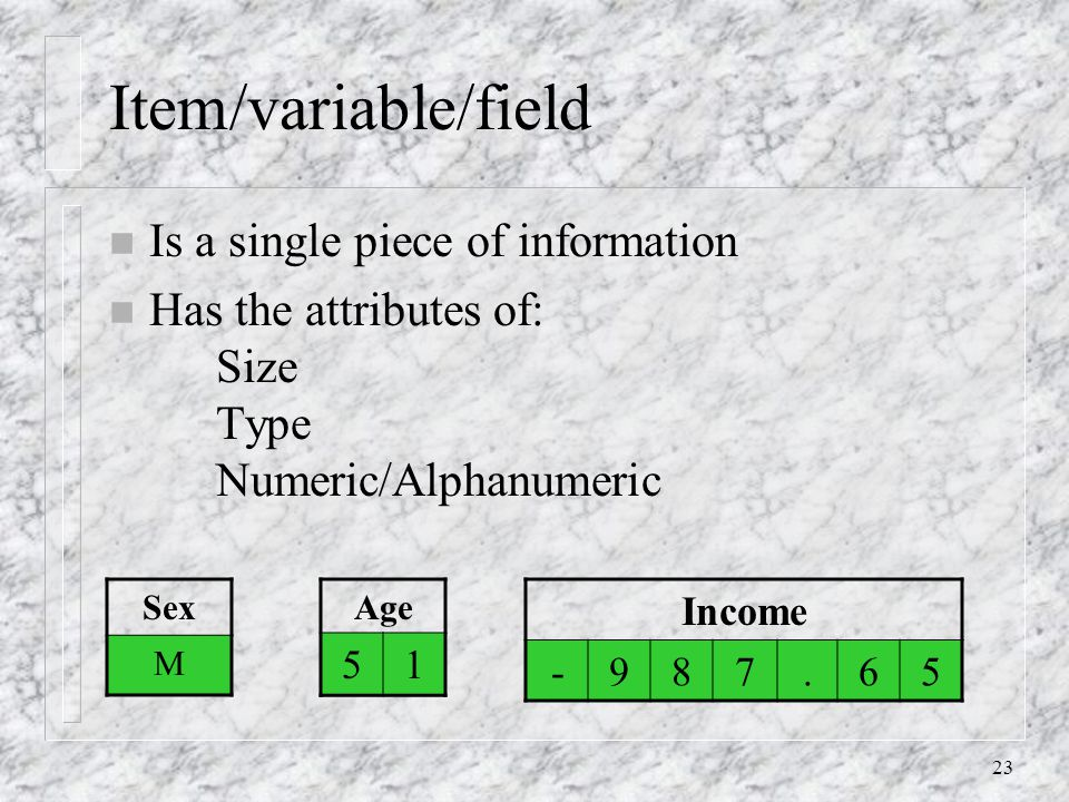 23 Item/variable/field n Is a single piece of information n Has the attributes of: Size Type Numeric/Alphanumeric Age 51 Sex M Income -987.65