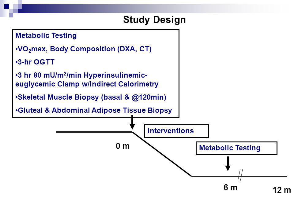 0 m 6 m 12 m Study Design Interventions Metabolic Testing VO 2 max, Body Composition (DXA, CT) 3-hr OGTT 3 hr 80 mU/m 2 /min Hyperinsulinemic- euglycemic Clamp w/Indirect Calorimetry Skeletal Muscle Biopsy (basal & @120min) Gluteal & Abdominal Adipose Tissue Biopsy Metabolic Testing
