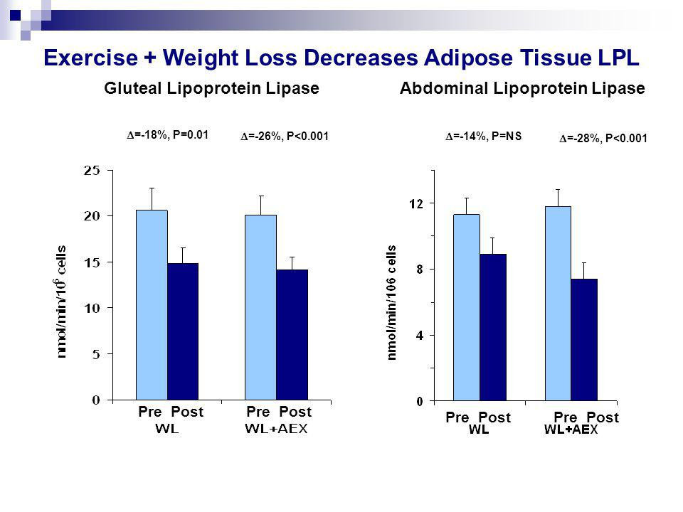  =-18%, P=0.01  =-26%, P<0.001  =-14%, P=NS  =-28%, P<0.001 Exercise + Weight Loss Decreases Adipose Tissue LPL Gluteal Lipoprotein LipaseAbdominal Lipoprotein Lipase Pre Post
