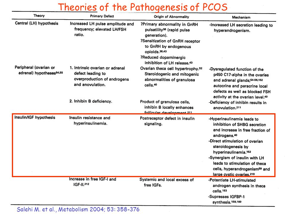 Salehi M. et al., Metabolism 2004; 53: 358-376 Theories of the Pathogenesis of PCOS