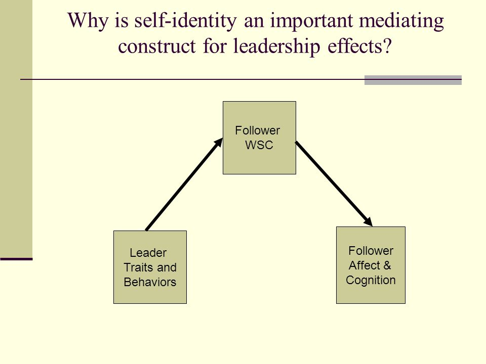 Why is self-identity an important mediating construct for leadership effects.