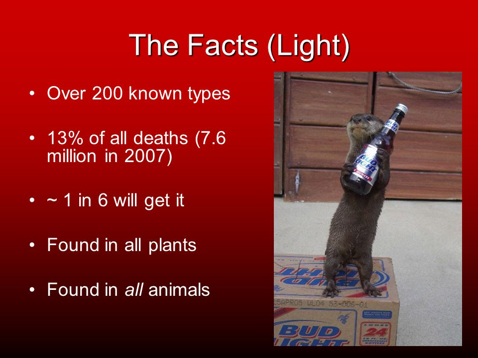 The Facts (Light) Over 200 known types 13% of all deaths (7.6 million in 2007) ~ 1 in 6 will get it Found in all plants Found in all animals