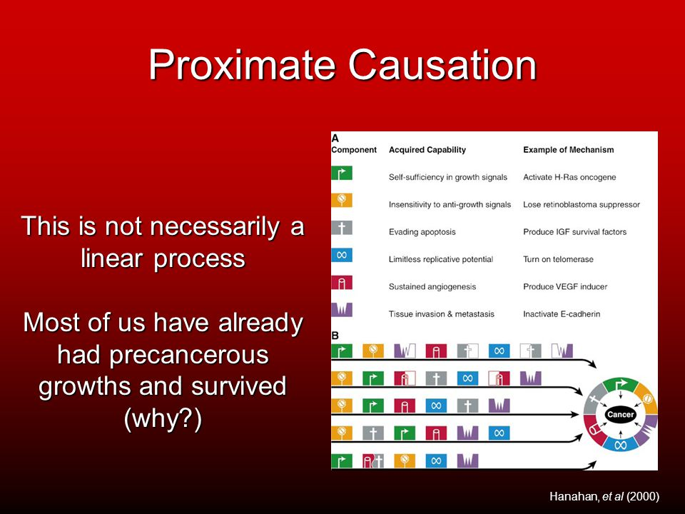 Proximate Causation This is not necessarily a linear process Most of us have already had precancerous growths and survived (why?) Hanahan, et al (2000)