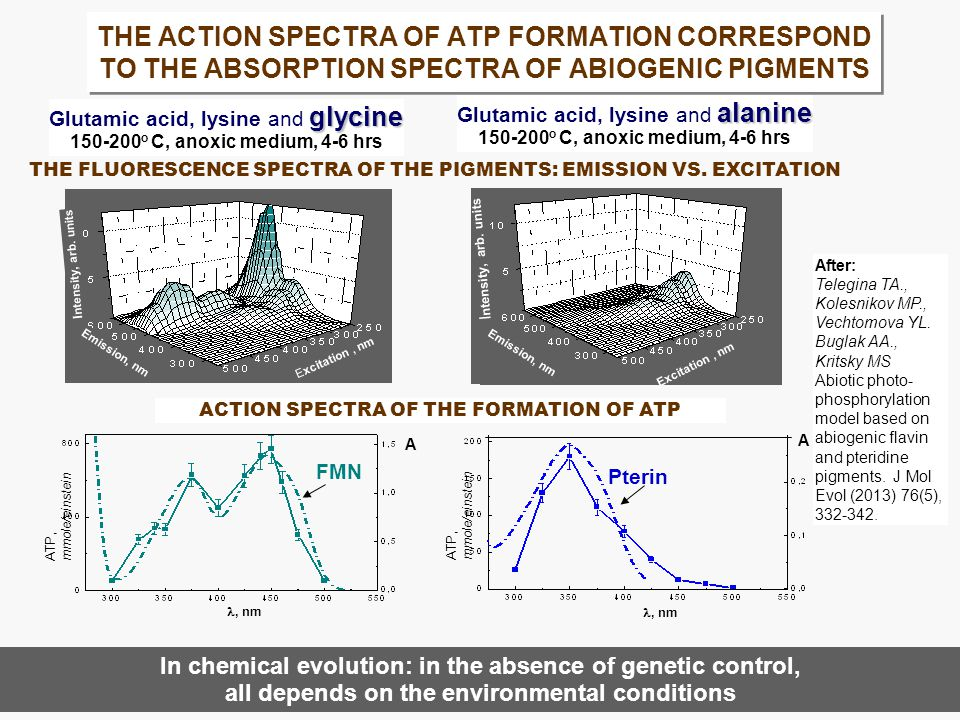 THE ACTION SPECTRA OF ATP FORMATION CORRESPOND TO THE ABSORPTION SPECTRA OF ABIOGENIC PIGMENTS After: Telegina TA., Kolesnikov MP., Vechtomova YL.