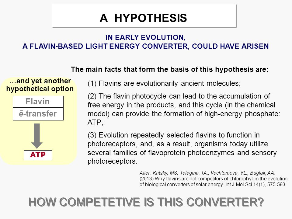 А HYPOTHESIS (1) Flavins are evolutionarily ancient molecules; (2) The flavin photocycle can lead to the accumulation of free energy in the products, and this cycle (in the chemical model) can provide the formation of high-energy phosphate: ATP; (3) Evolution repeatedly selected flavins to function in photoreceptors, and, as a result, organisms today utilize several families of flavoprotein photoenzymes and sensory photoreceptors.