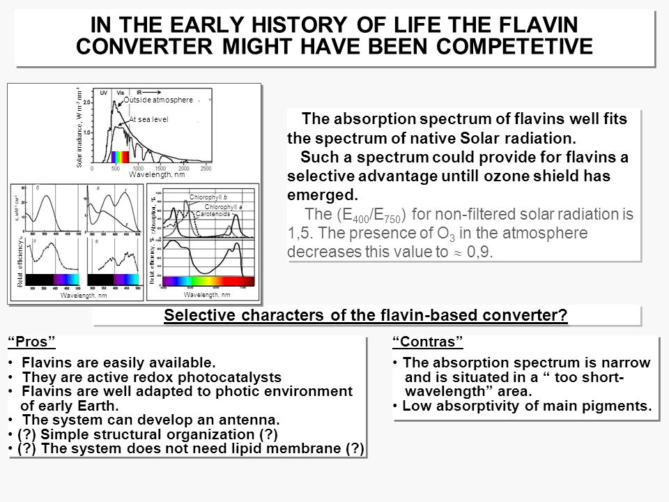 IN THE EARLY HISTORY OF LIFE THE FLAVIN CONVERTER MIGHT HAVE BEEN COMPETETIVE Pros Flavins are easily available.