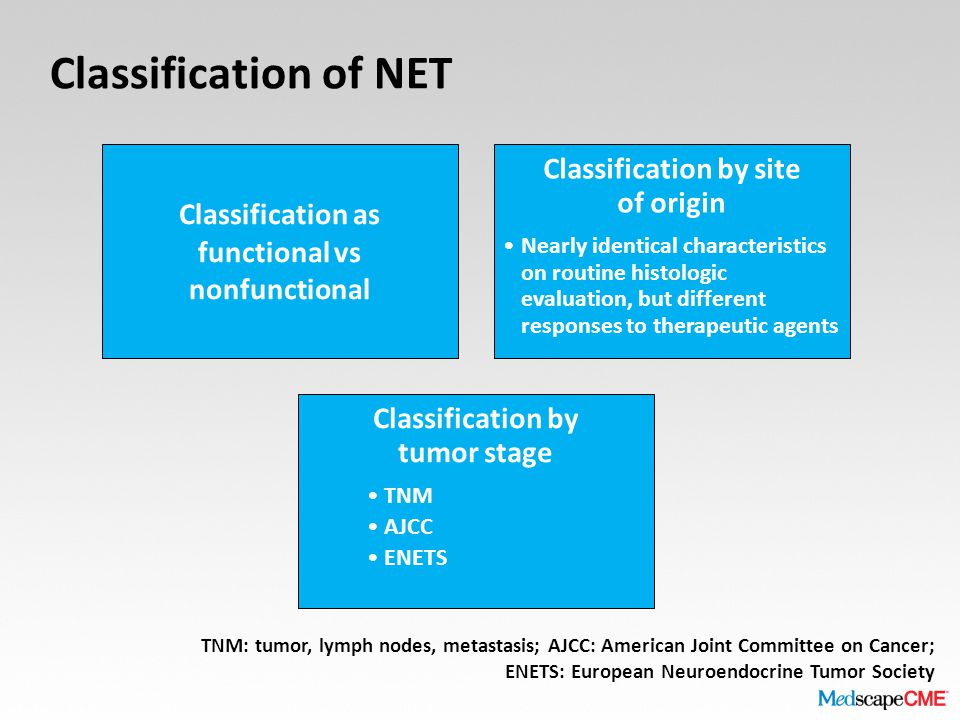 Classification of NET Classification as functional vs nonfunctional Classification by site of origin Nearly identical characteristics on routine histo