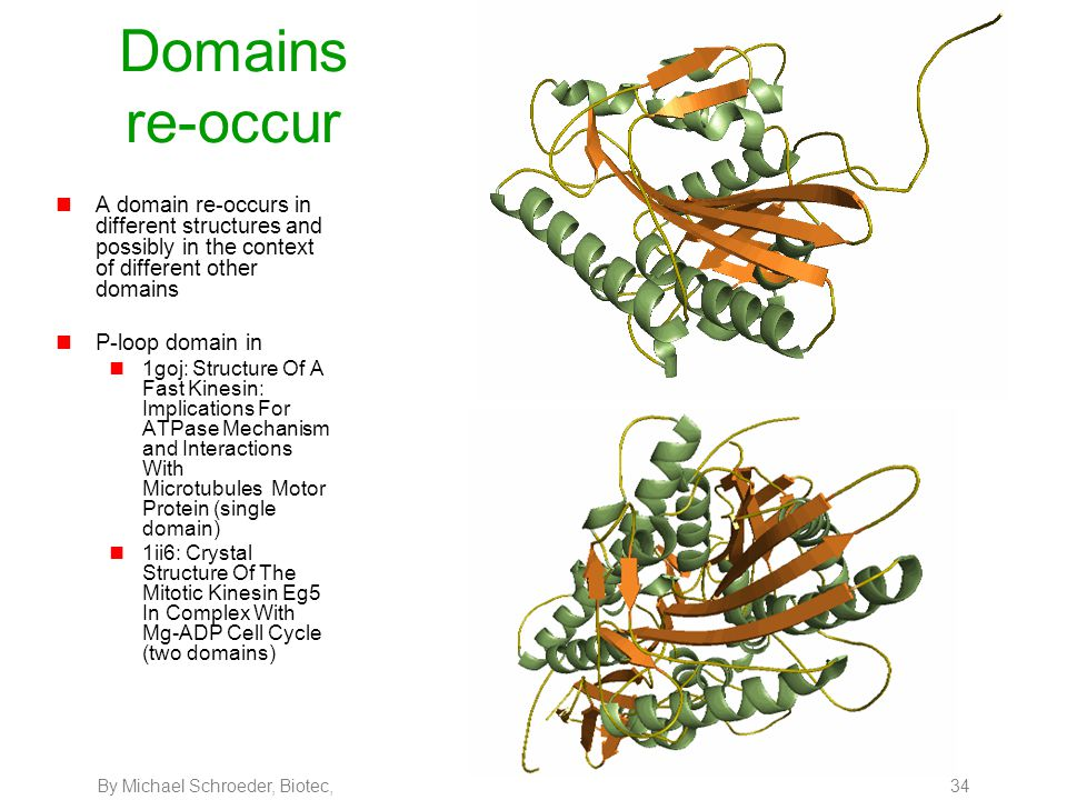 By Michael Schroeder, Biotec, 34 Domains re-occur nA domain re-occurs in different structures and possibly in the context of different other domains n