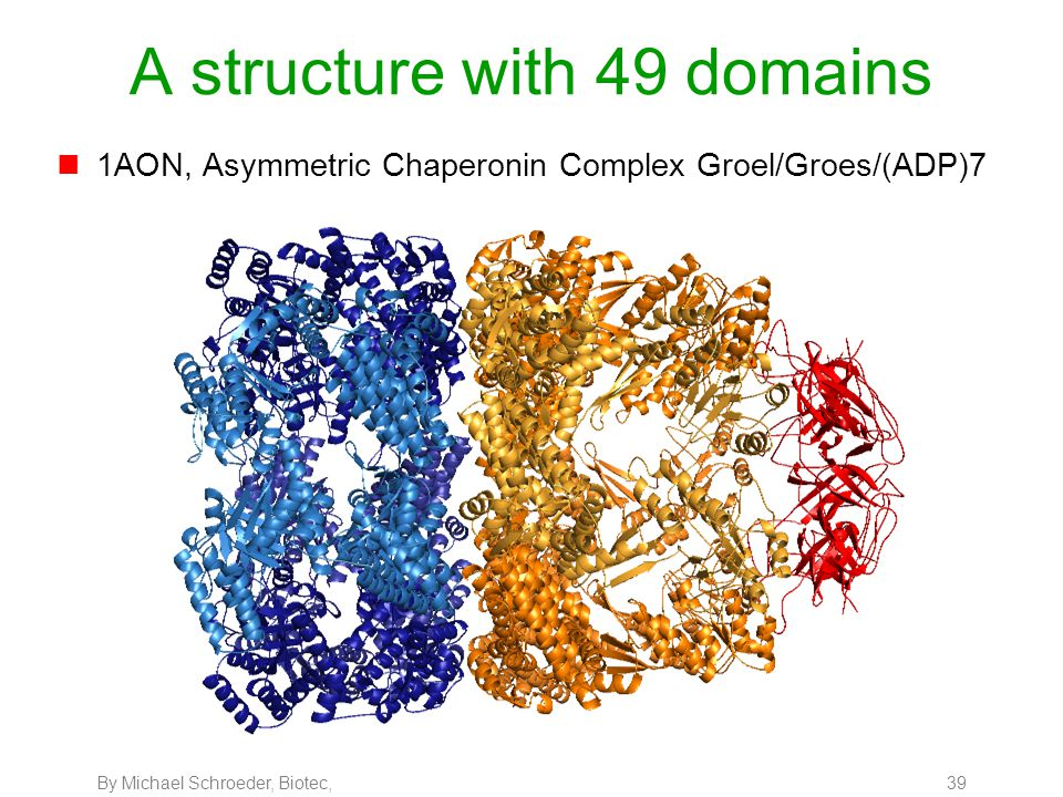 By Michael Schroeder, Biotec, 39 A structure with 49 domains n1AON, Asymmetric Chaperonin Complex Groel/Groes/(ADP)7