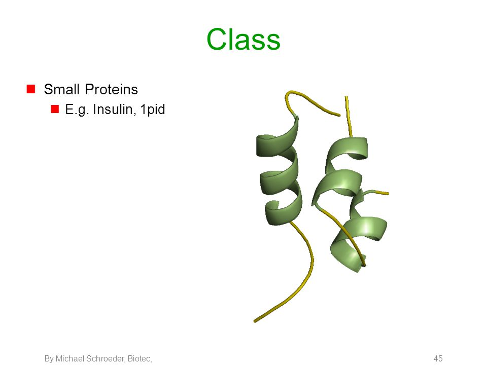 By Michael Schroeder, Biotec, 45 Class nSmall Proteins nE.g. Insulin, 1pid