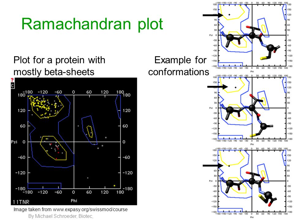 By Michael Schroeder, Biotec, 7 Ramachandran plot Plot for a protein with mostly beta-sheets Example for conformations Image taken from www.expasy.org