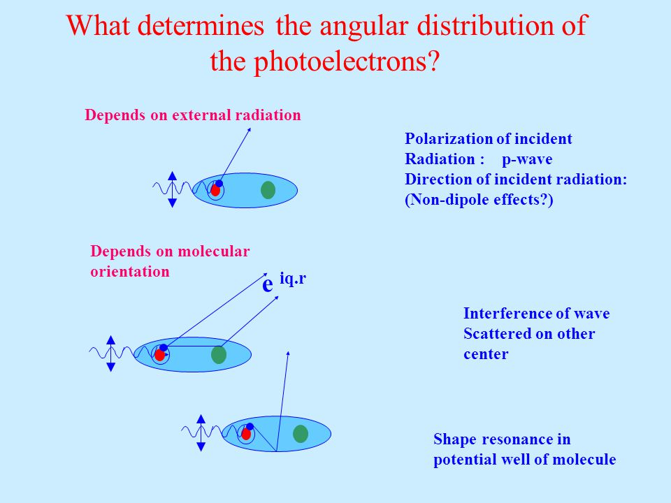 What determines the angular distribution of the photoelectrons.