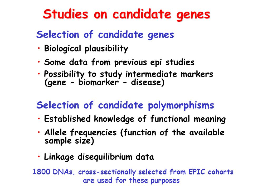 Studies on candidate genes Selection of candidate genes Selection of candidate polymorphisms 1800 DNAs, cross-sectionally selected from EPIC cohorts a