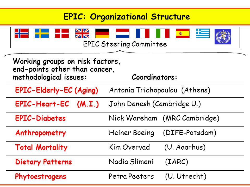 Working groups on risk factors, end-points other than cancer, methodological issues: Coordinators: EPIC-Elderly-EC (Aging) EPIC-Elderly-EC (Aging) Ant