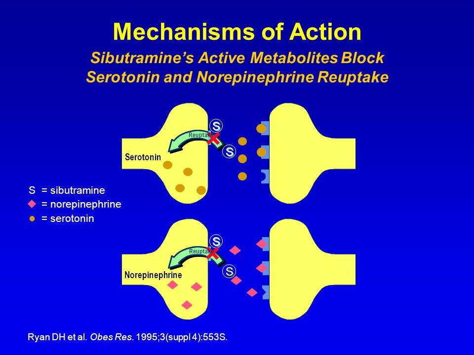 Ryan DH et al. Obes Res. 1995;3(suppl 4):553S. S = sibutramine  = norepinephrine = serotonin Norepinephrine Serotonin S S S S S S S S S S S S S S S R