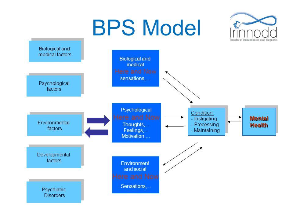 BPS Model Psychological factors Psychological factors Environmental factors Environmental factors Developmental factors Developmental factors Psychiat