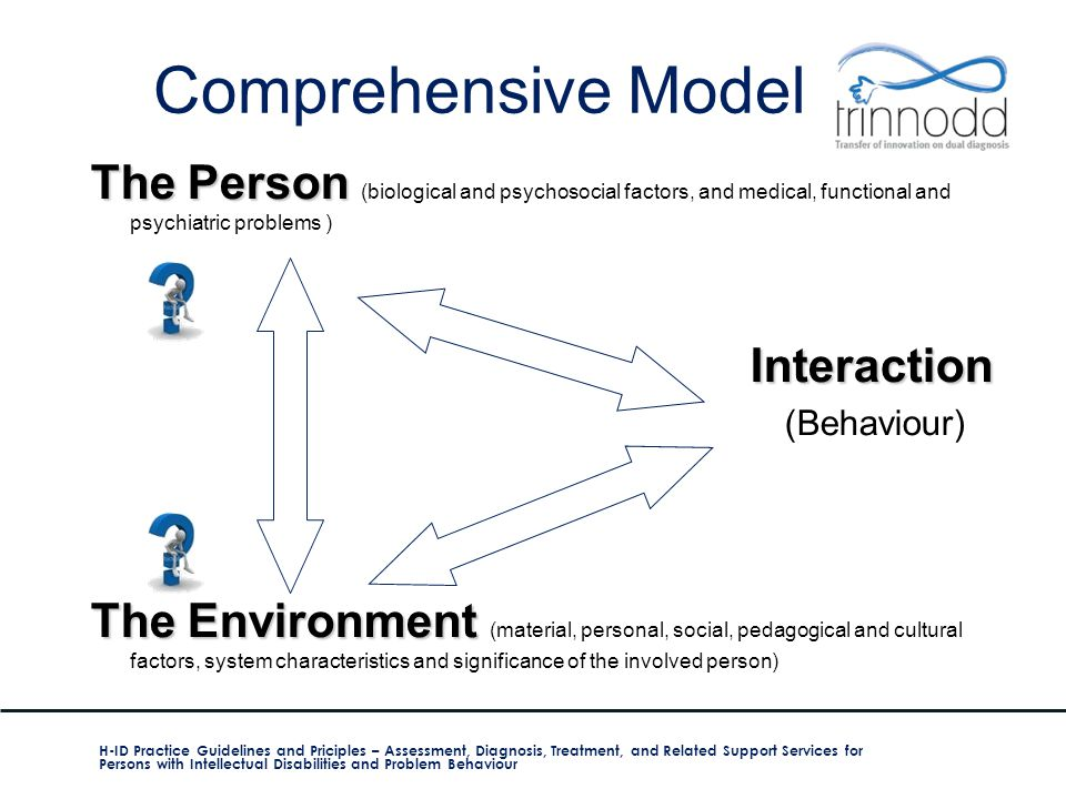 Comprehensive Model The Person The Person (biological and psychosocial factors, and medical, functional and psychiatric problems ) Interaction Interac