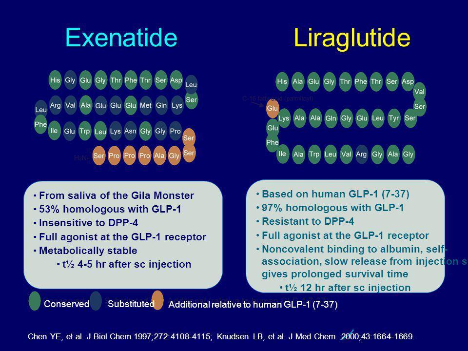 Exenatide Chen YE, et al. J Biol Chem.1997;272:4108-4115; Knudsen LB, et al. J Med Chem. 2000;43:1664-1669. Liraglutide Based on human GLP-1 (7-37) 97