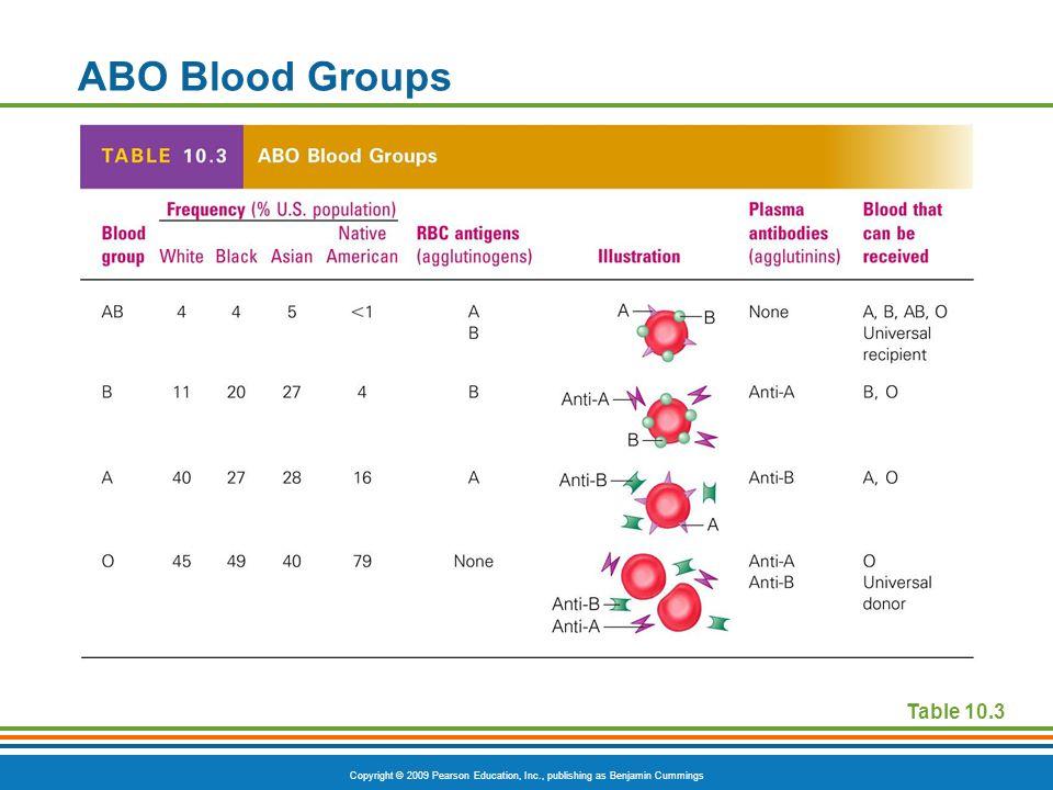 Copyright © 2009 Pearson Education, Inc., publishing as Benjamin Cummings ABO Blood Groups Table 10.3