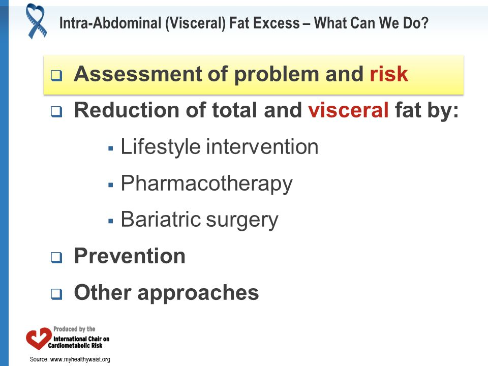 Source: www.myhealthywaist.org Intra-Abdominal (Visceral) Fat Excess – What Can We Do.