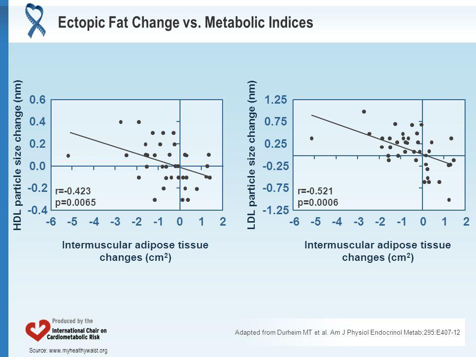 Source: www.myhealthywaist.org Ectopic Fat Change vs.