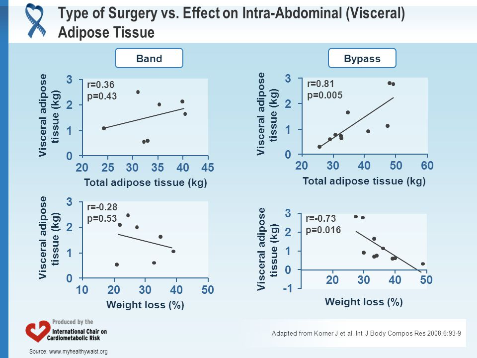 Source: www.myhealthywaist.org Type of Surgery vs. Effect on Intra-Abdominal (Visceral) Adipose Tissue Adapted from Korner J et al. Int J Body Compos