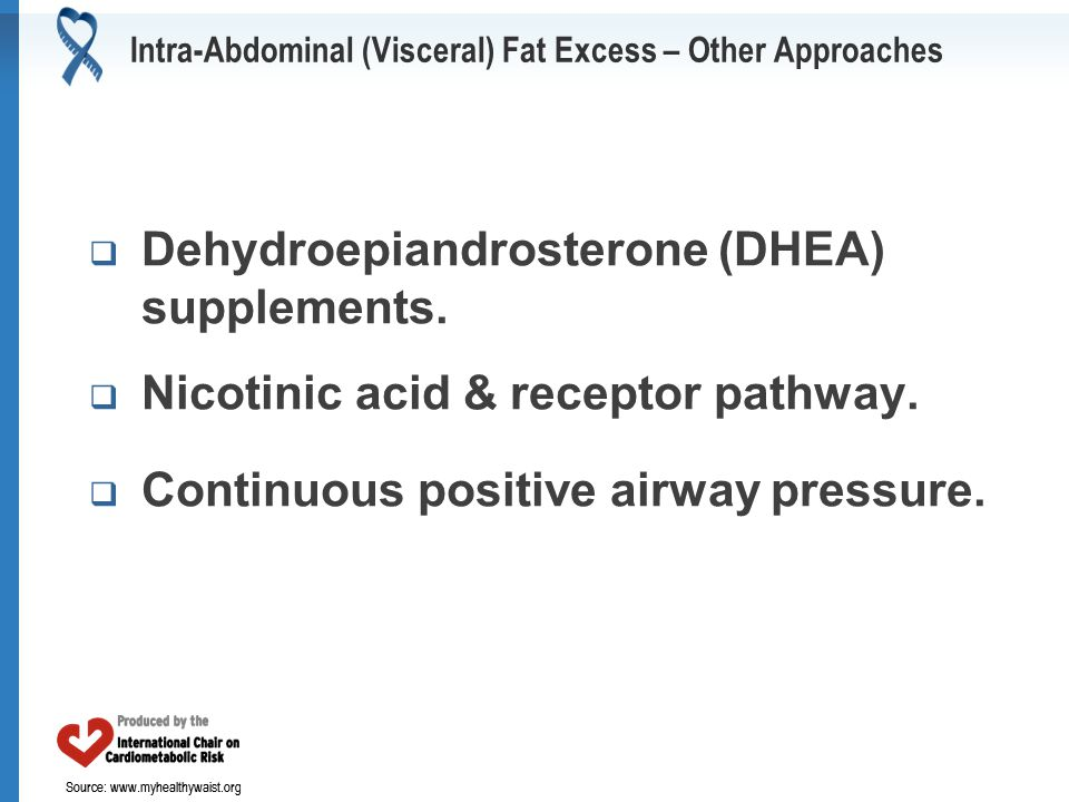 Source: www.myhealthywaist.org Intra-Abdominal (Visceral) Fat Excess – Other Approaches  Dehydroepiandrosterone (DHEA) supplements.  Nicotinic acid