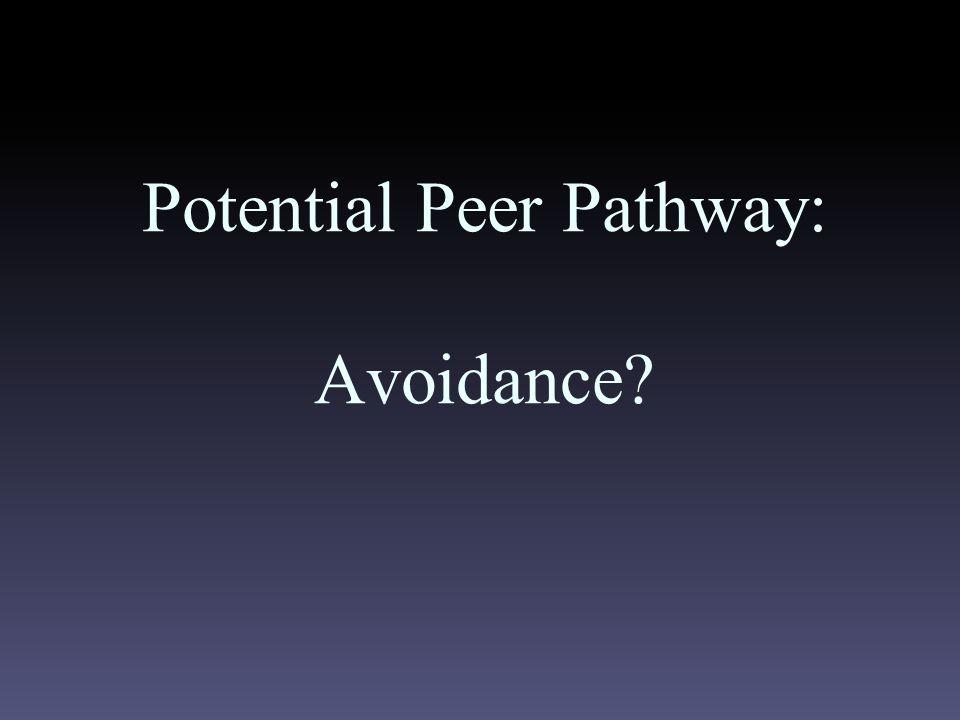Potential Peer Pathway: Avoidance