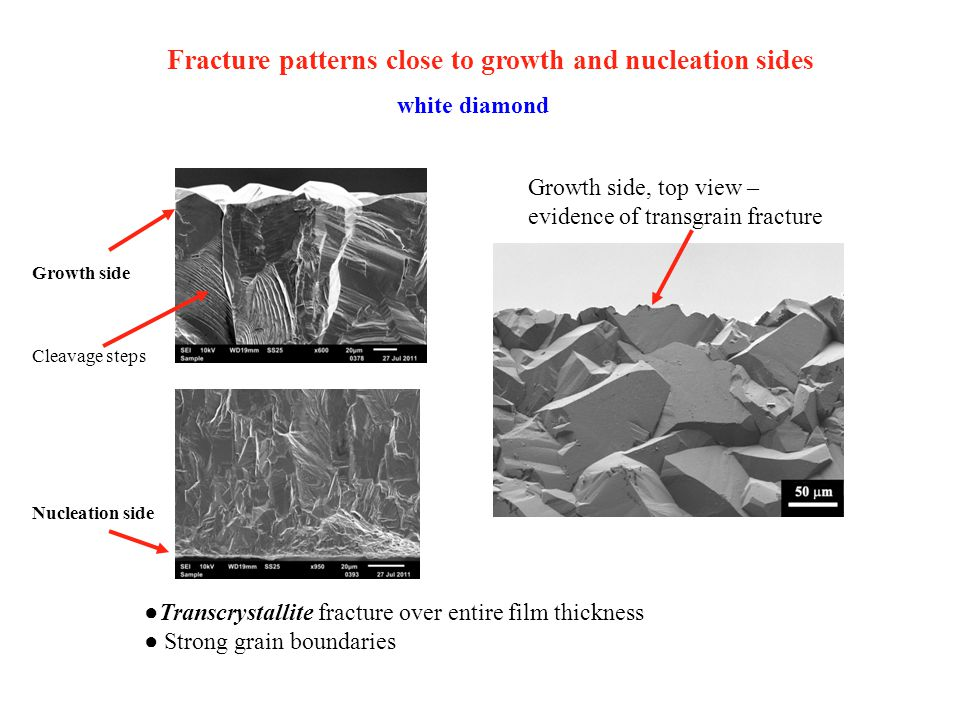 Fracture patterns close to growth and nucleation sides white diamond Growth side, top view – evidence of transgrain fracture ●Transcrystallite fractur