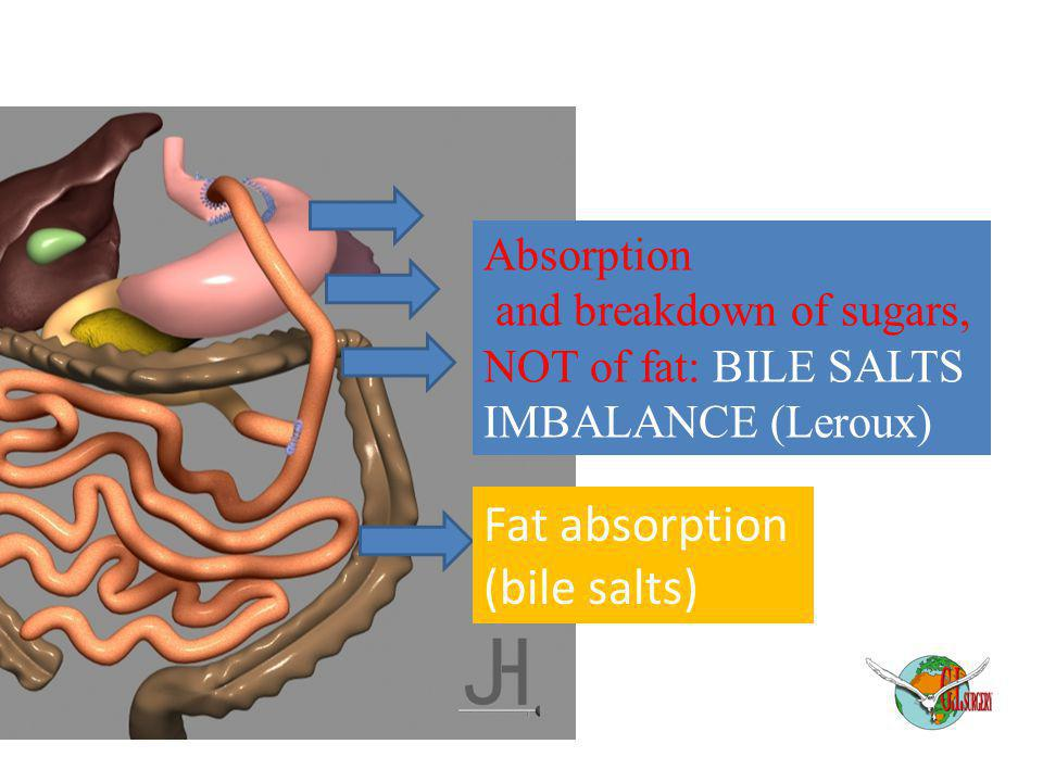 Absorption and breakdown of sugars, NOT of fat: BILE SALTS IMBALANCE (Leroux) Fat absorption (bile salts)