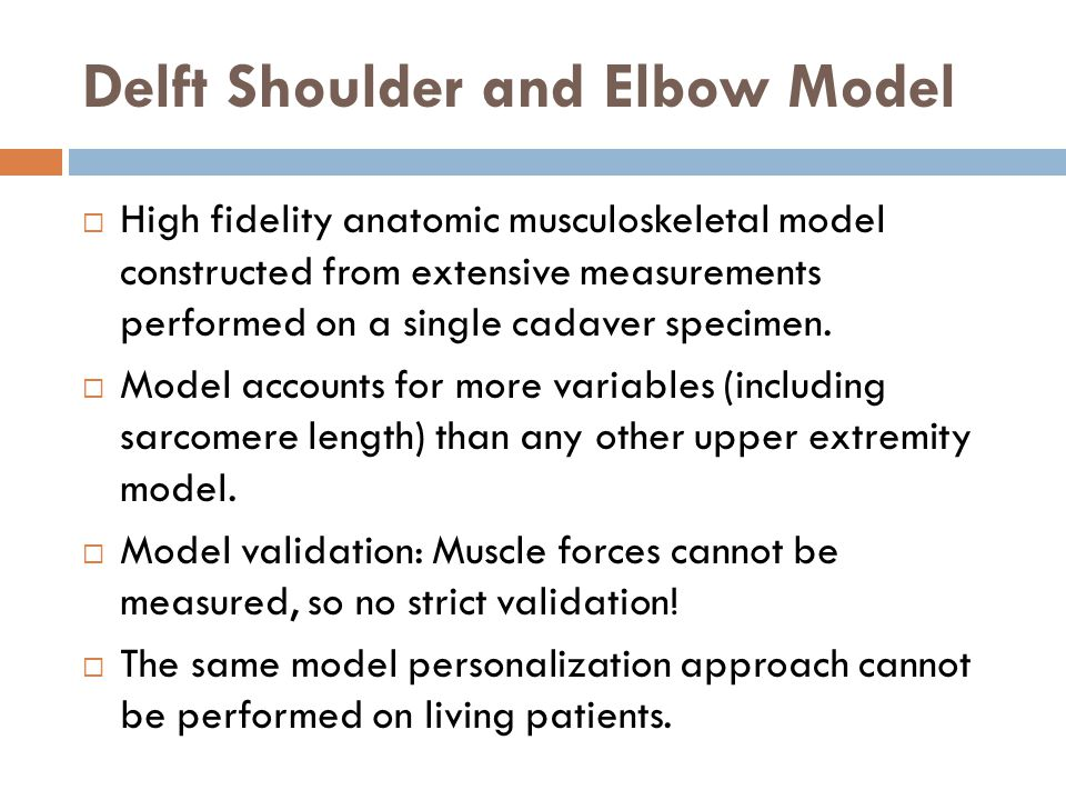 Delft Shoulder and Elbow Model  High fidelity anatomic musculoskeletal model constructed from extensive measurements performed on a single cadaver specimen.