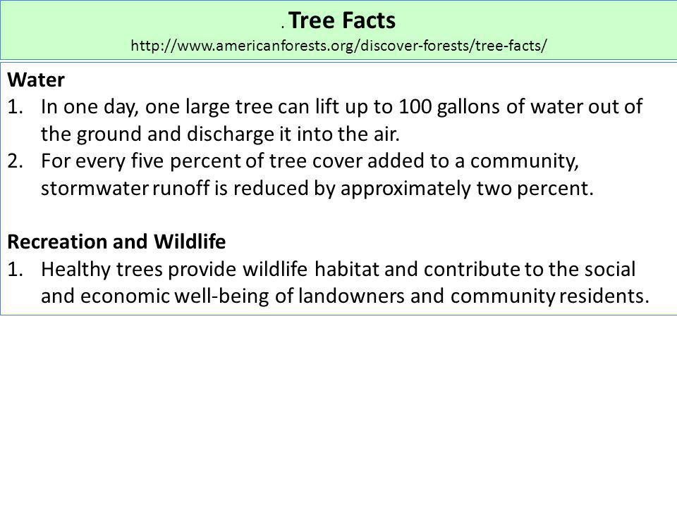 . Tree Facts http://www.americanforests.org/discover-forests/tree-facts/ Water 1.In one day, one large tree can lift up to 100 gallons of water out of