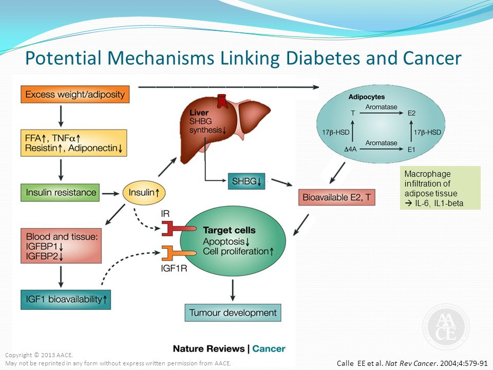 Potential Mechanisms Linking Diabetes and Cancer Macrophage infiltration of adipose tissue  IL-6, IL1-beta Calle EE et al. Nat Rev Cancer. 2004;4:579