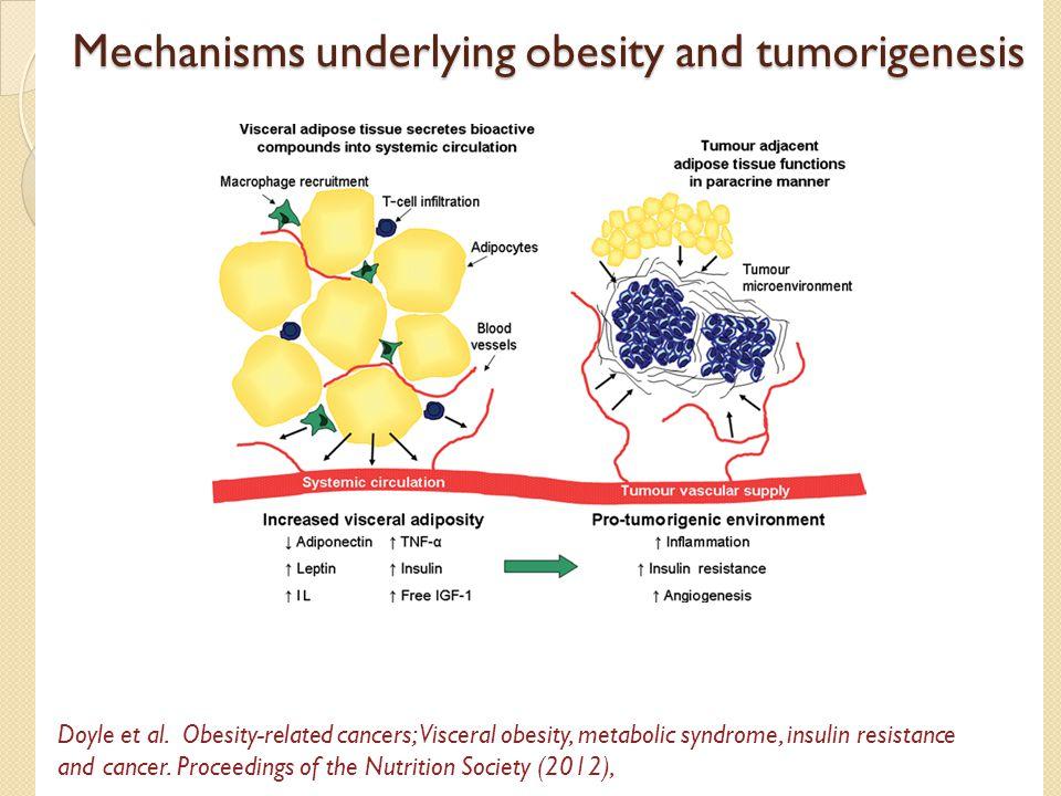 Mechanisms underlying obesity and tumorigenesis Doyle et al.