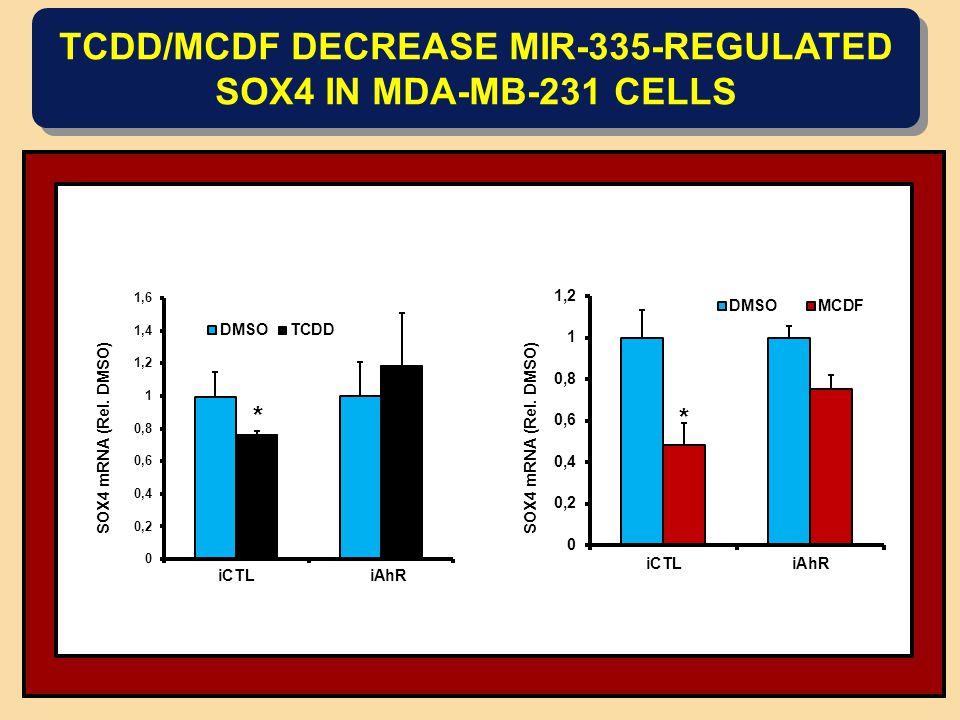 TCDD/MCDF DECREASE MIR-335-REGULATED SOX4 IN MDA-MB-231 CELLS * iCTLiAhR * SOX4 mRNA (Rel. DMSO)