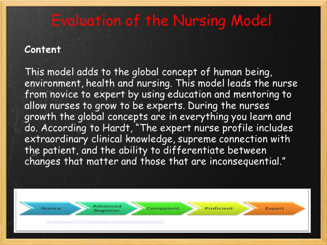Evaluation of the Nursing Model Content This model adds to the global concept of human being, environment, health and nursing.