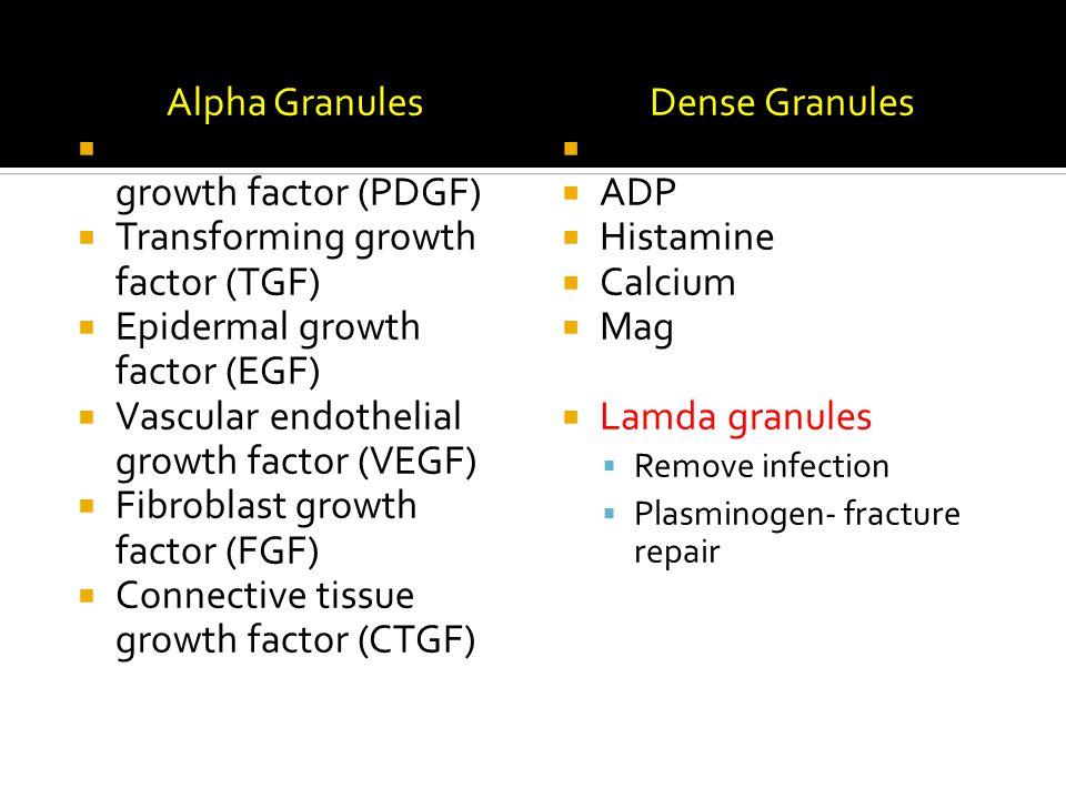 Alpha Granules  Platelet derived growth factor (PDGF)  Transforming growth factor (TGF)  Epidermal growth factor (EGF)  Vascular endothelial growt