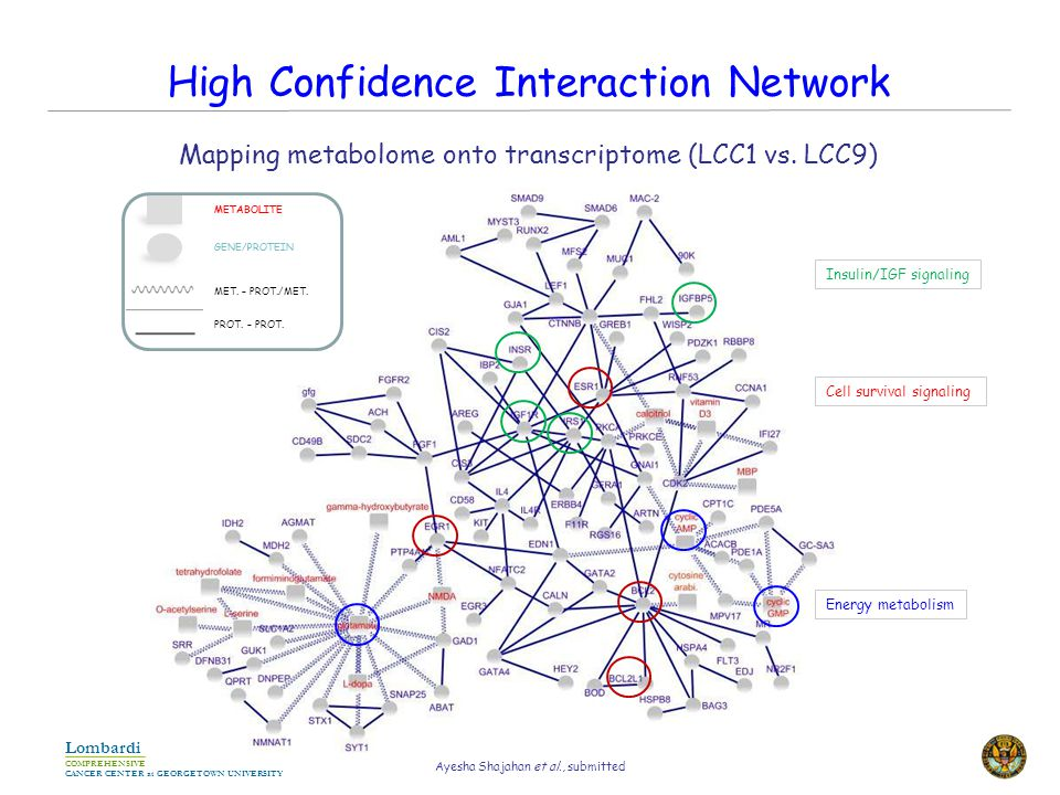 COMPREHENSIVE CANCER CENTER at GEORGETOWN UNIVERSITY Lombardi High Confidence Interaction Network METABOLITE GENE/PROTEIN MET.