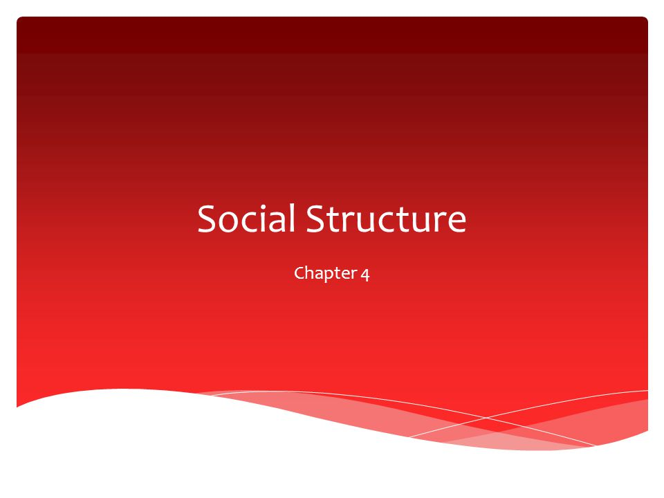 Social Structure Chapter 4