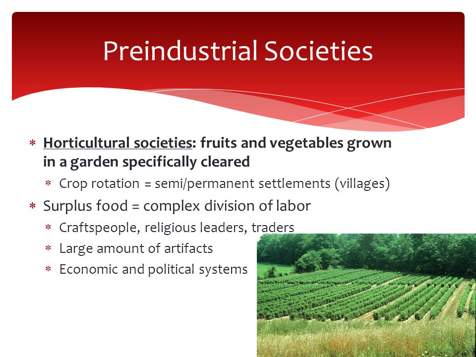  Horticultural societies: fruits and vegetables grown in a garden specifically cleared  Crop rotation = semi/permanent settlements (villages)  Surplus food = complex division of labor  Craftspeople, religious leaders, traders  Large amount of artifacts  Economic and political systems Preindustrial Societies