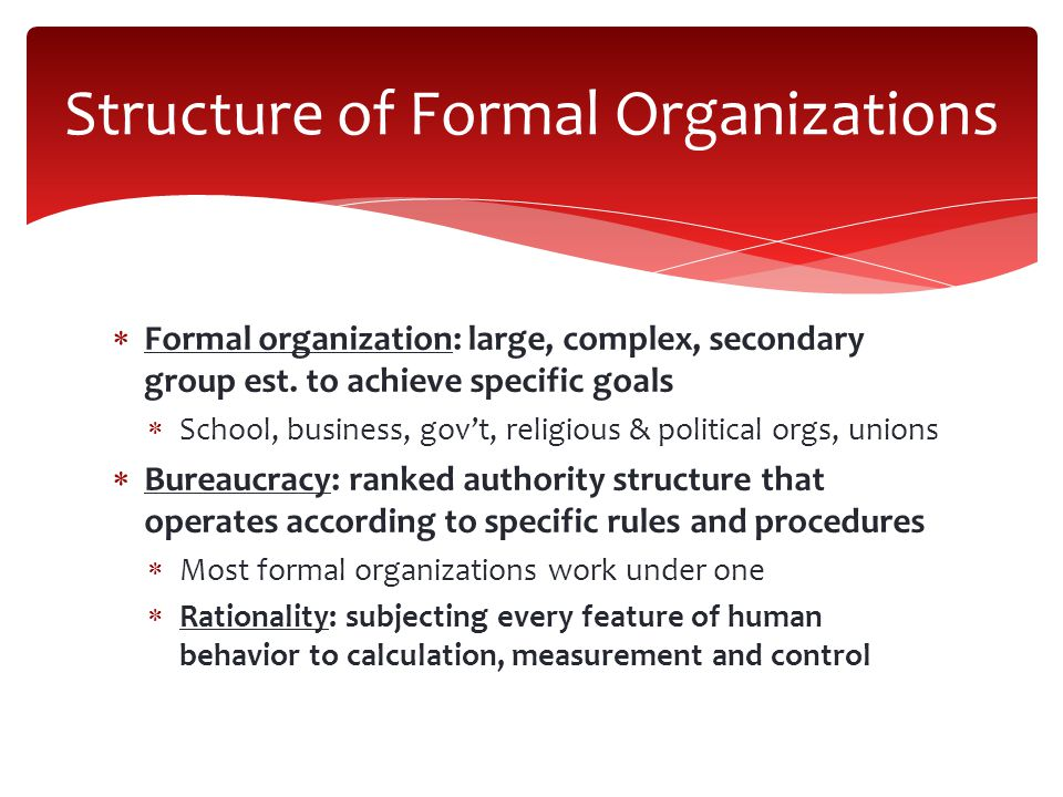  Formal organization: large, complex, secondary group est.